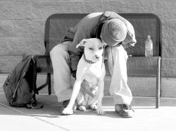HomelessShelter-grey.jpg