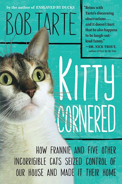 kittyCornered.jpg