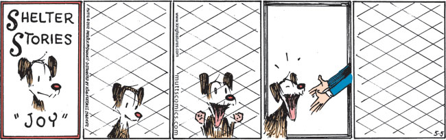 Photos and artwork: MUTTS © Patrick McDonnell. Reprinted by permission of King Features Syndicate, Inc.