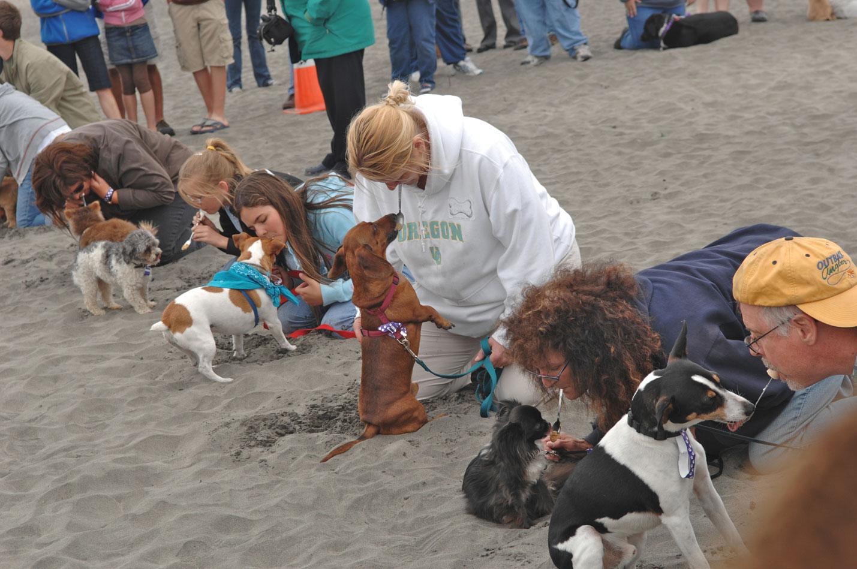 Photo-DoggieOlympicsPBLickChristopherSpence.jpg