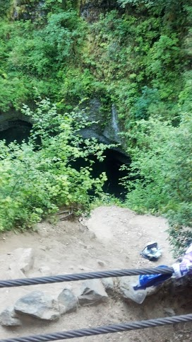 Picture provided by the owner of portion of the trail where thedog fell.