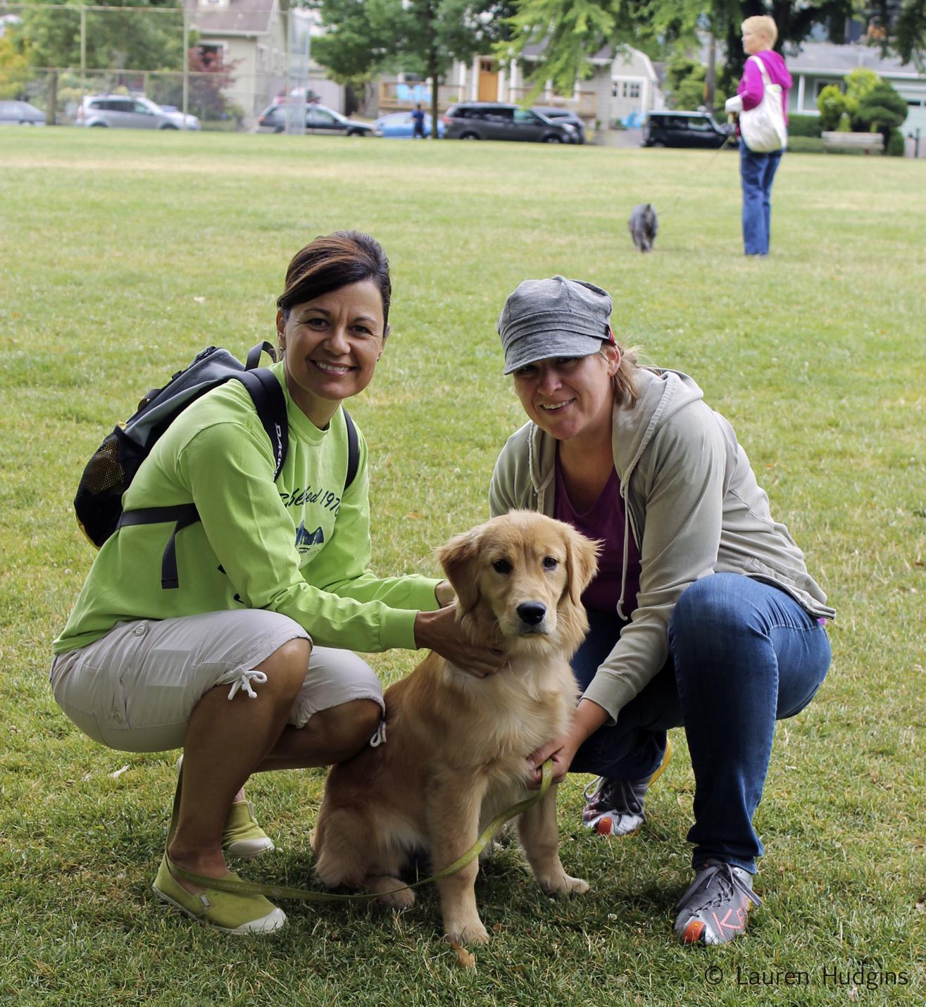golden puppy.jpg