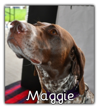 _Maggie.jpg