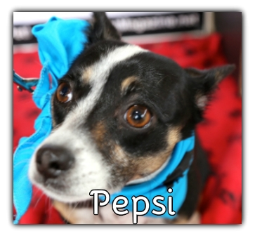 _Pepsi.jpg