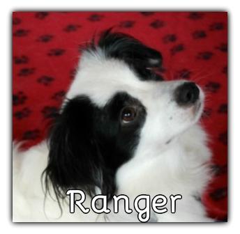 _Ranger_winner.jpg
