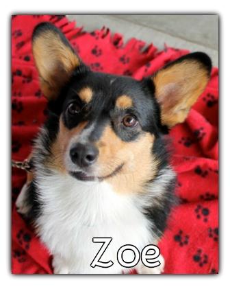 _Zoe.jpg