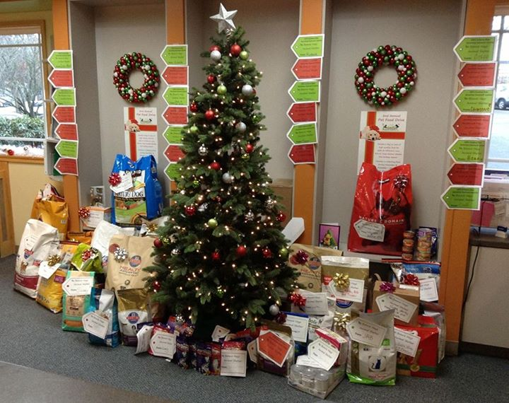 """Frontier Vet Hospital's 2013 Giving Tree was a beautiful sight!             Normal   0           false   false   false     EN-US   X-NONE   X-NONE                                                                                                                                                                                                                                                                                                                                                                                                                                                                                                                                                                                                                                                                                                                                                                                                                                                               /* Style Definitions */  table.MsoNormalTable {mso-style-name:""""Table Normal""""; mso-tstyle-rowband-size:0; mso-tstyle-colband-size:0; mso-style-noshow:yes; mso-style-priority:99; mso-style-parent:""""""""; mso-padding-alt:0in 5.4pt 0in 5.4pt; mso-para-margin-top:0in; mso-para-margin-right:0in; mso-para-margin-bottom:8.0pt; mso-para-margin-left:0in; line-height:107%; mso-pagination:widow-orphan; font-size:11.0pt; font-family:""""Calibri"""",sans-serif; mso-ascii-font-family:Calibri; mso-ascii-theme-font:minor-latin; mso-hansi-font-family:Calibri; mso-hansi-theme-font:minor-latin;}"""