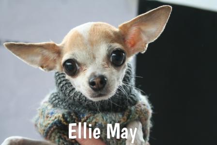 EllieMay.jpg