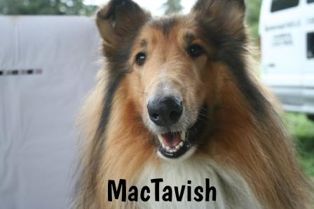 MacTavish.jpg