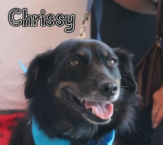 Chrissy.jpg