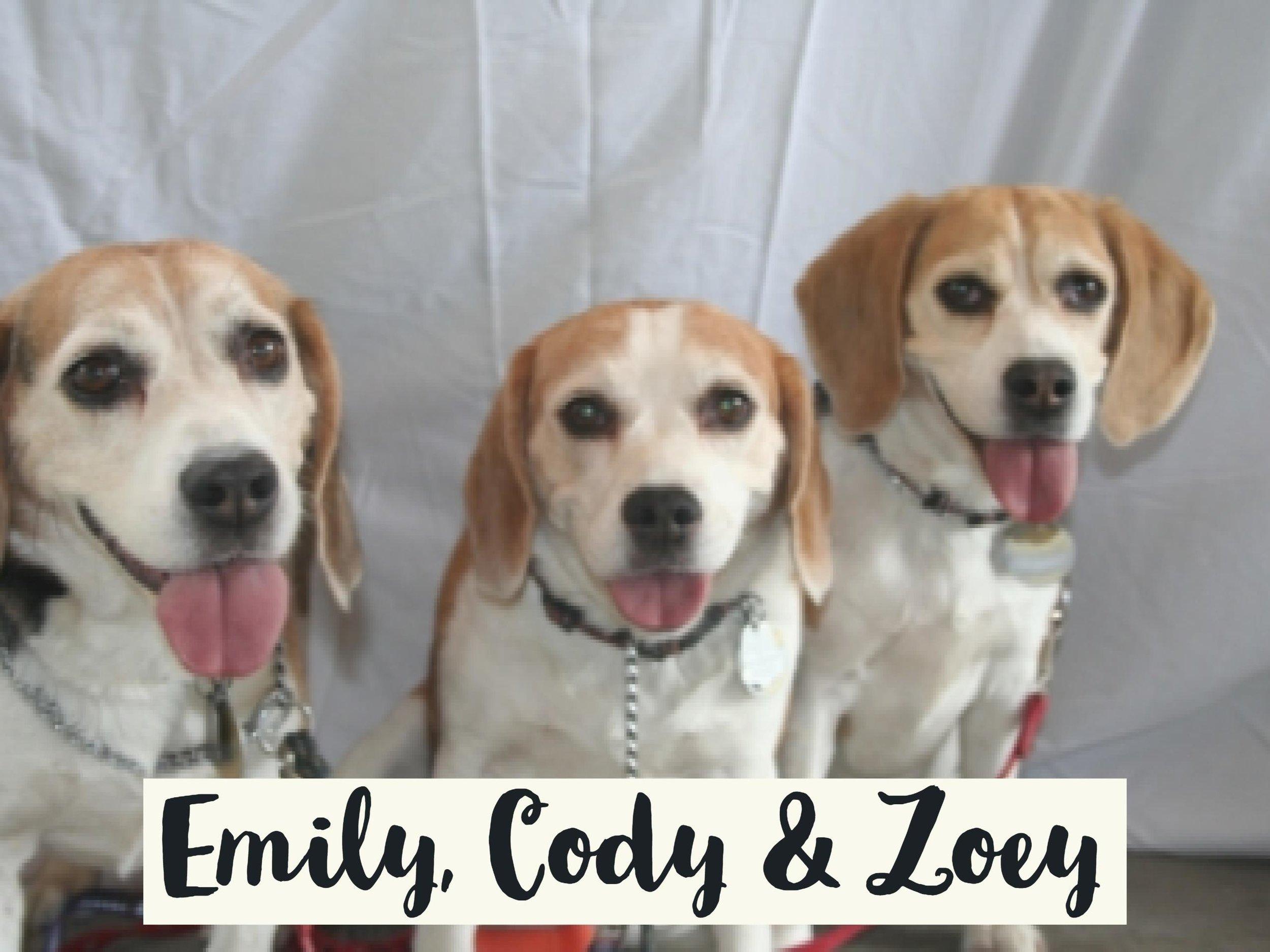 Emily-Cody-Zoey_WV17.jpg