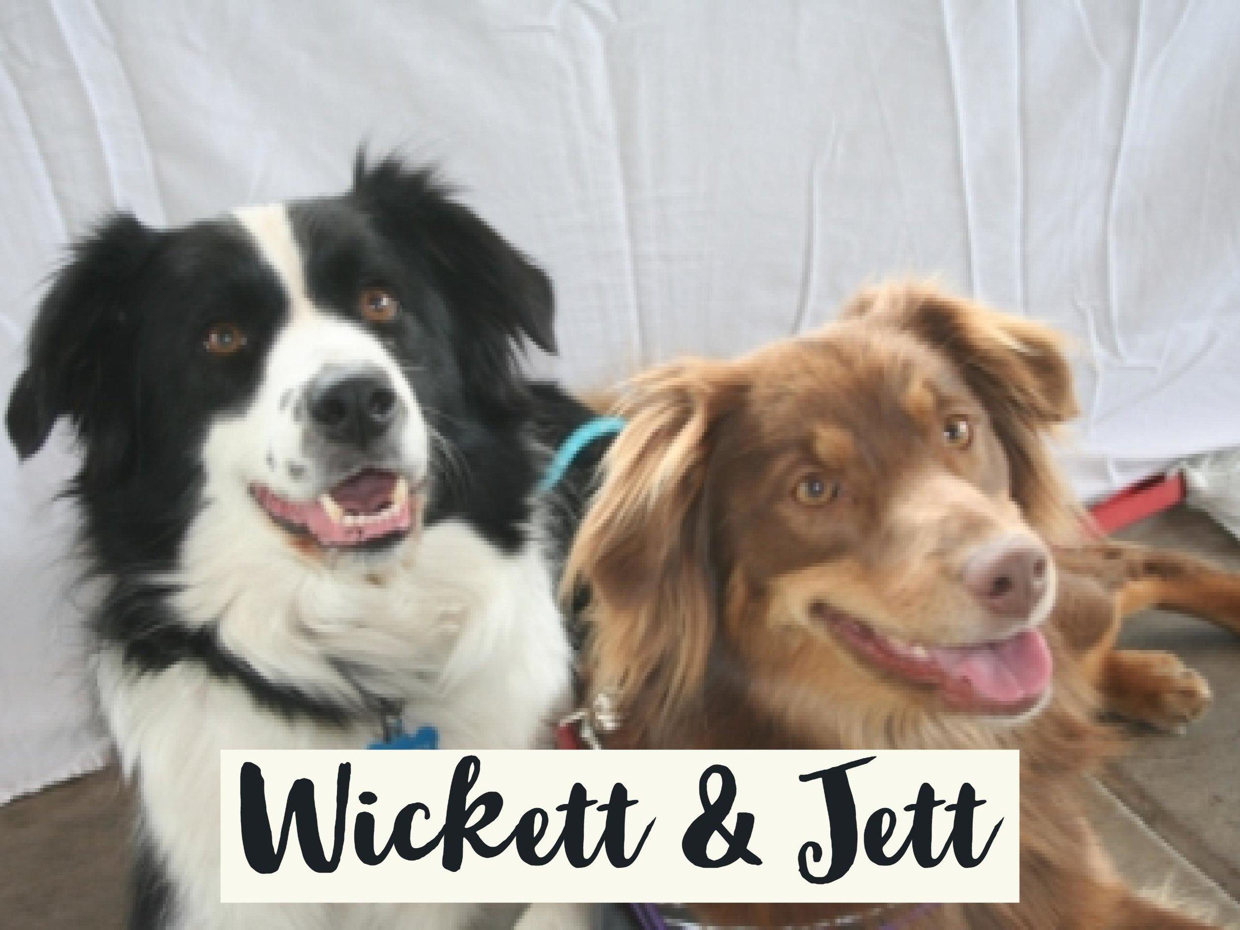 Wickett-Jett_WV17.jpg
