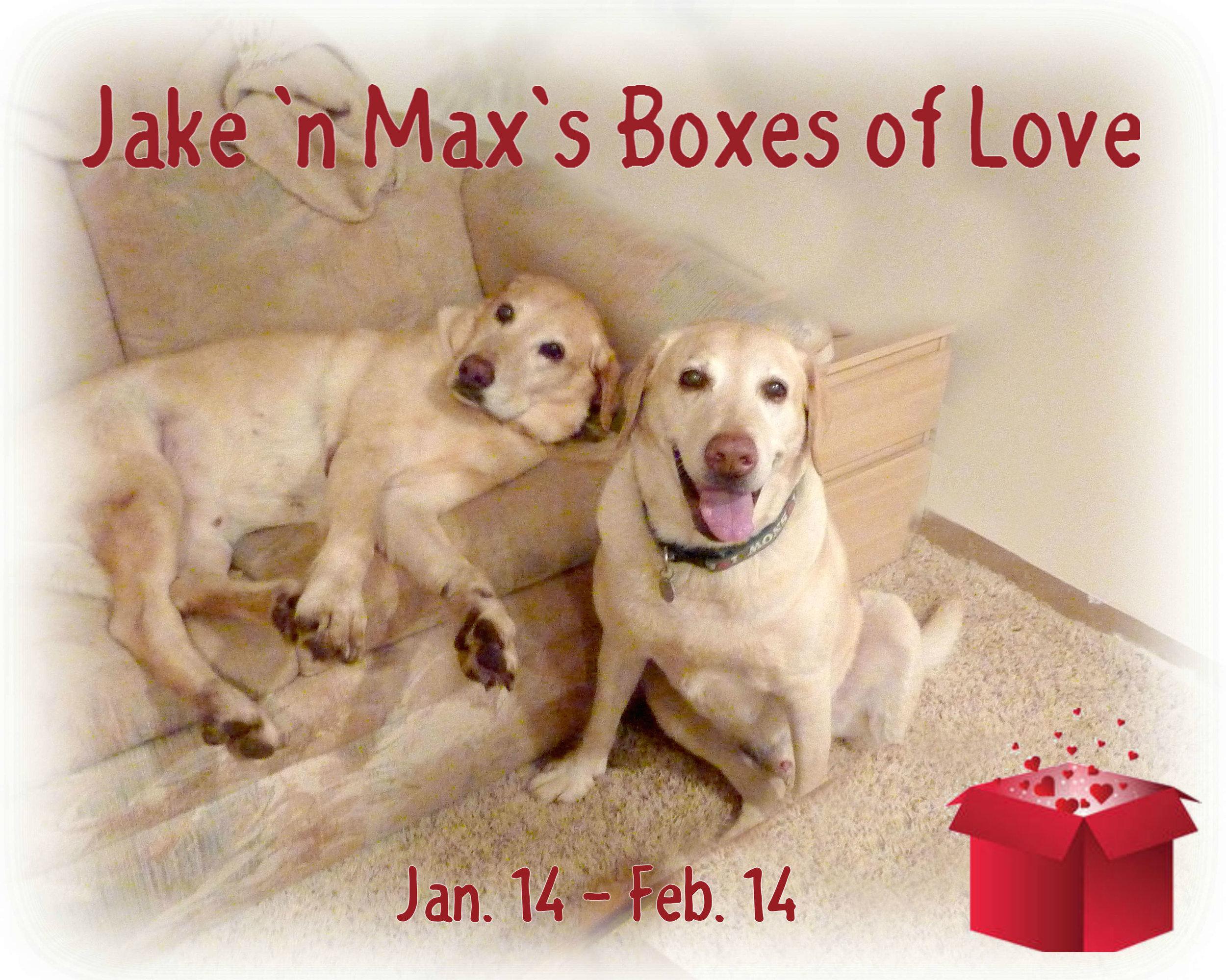 Jake_Max_run dates_box.jpg