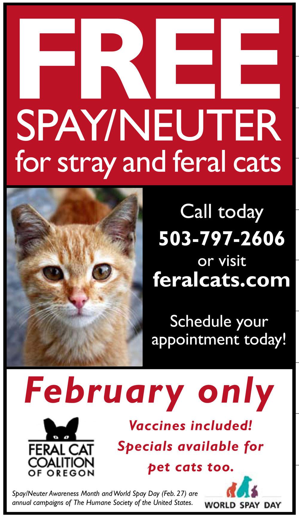 feb18-fcco flyer.jpg