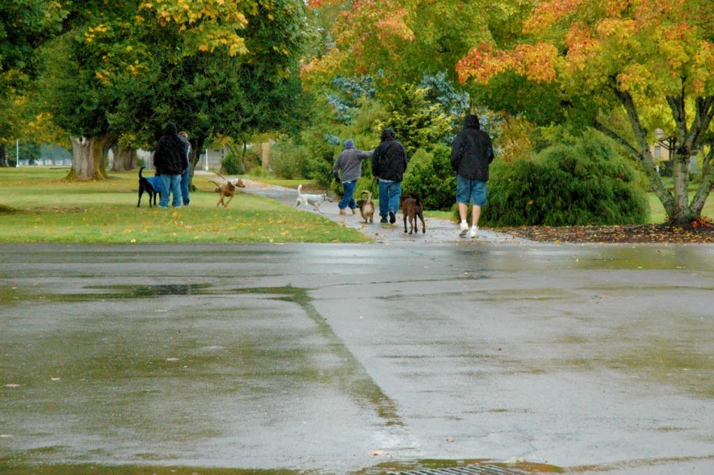 youth walking 3-rz.jpg