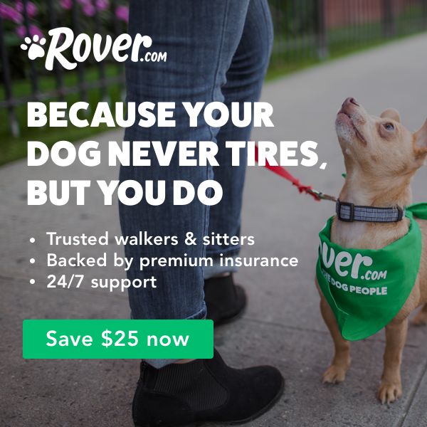 sponsored by Rover