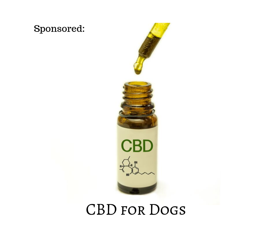 CBD for Dogs.png