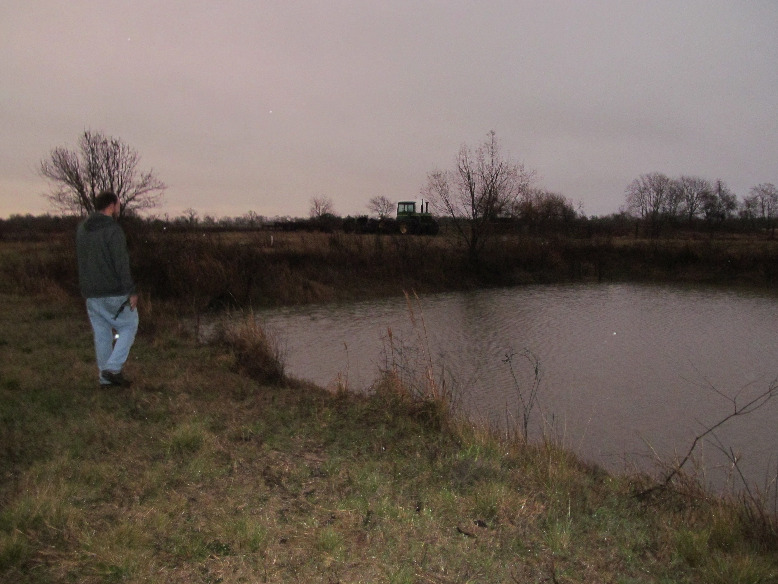 This pond was near empty a month ago!  We'll use this water to irrigate the fruit trees using underground PVC pipes.