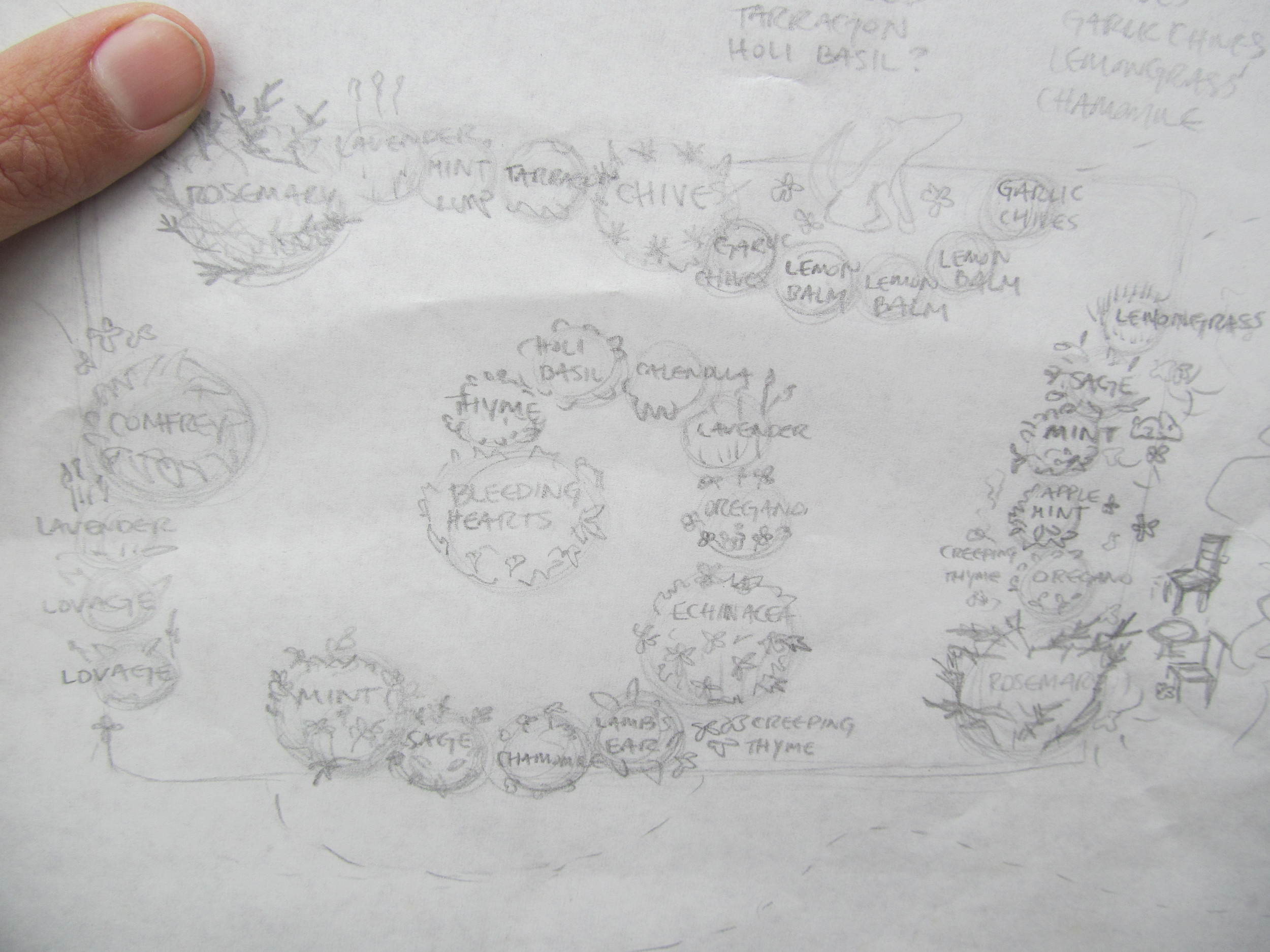 The rough sketch of what this garden will resemble. Egads, the handwriting.