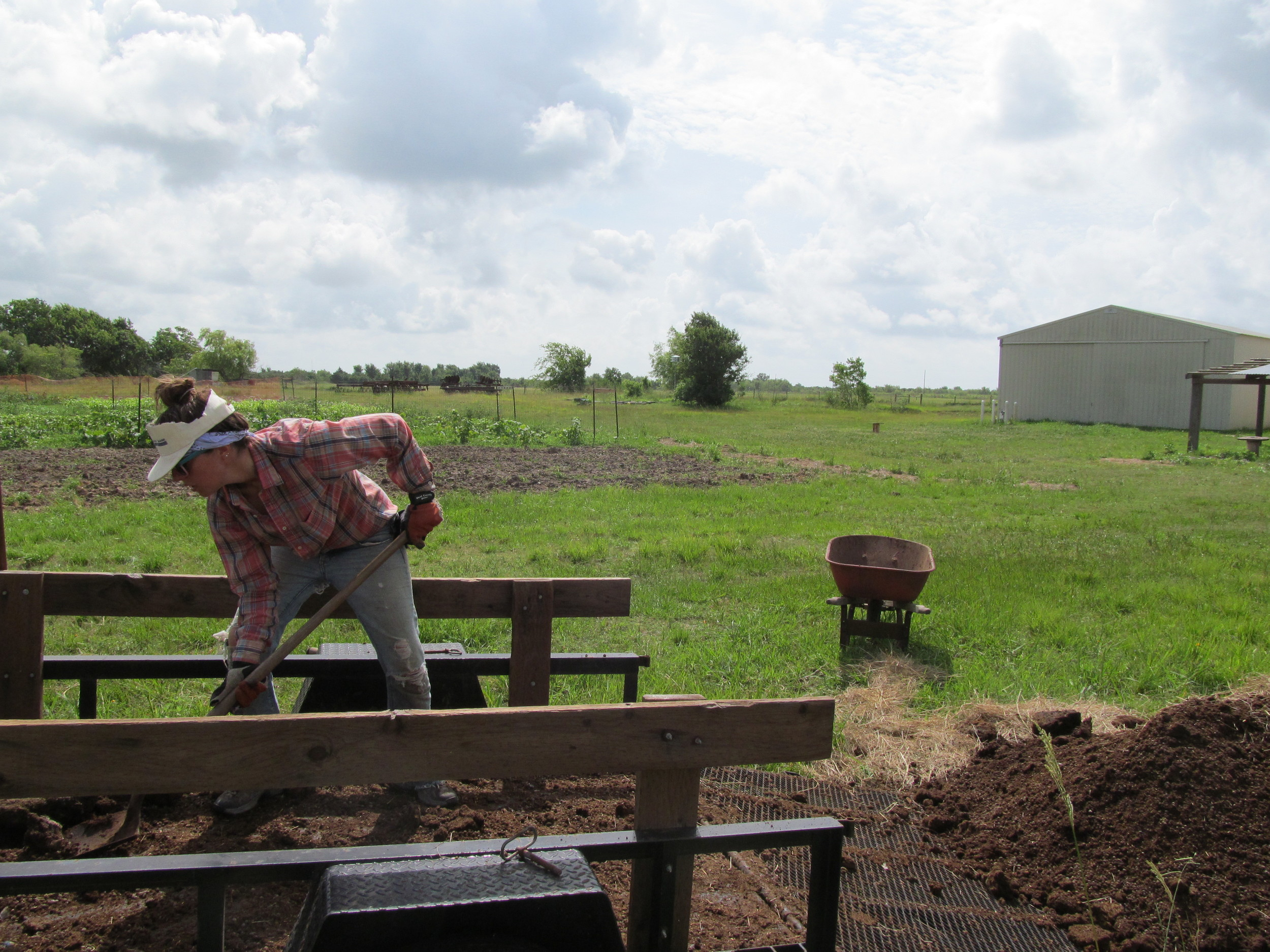 Putting the manure near the compost pile where it will steam and sit for a bit before applying it to the fields.