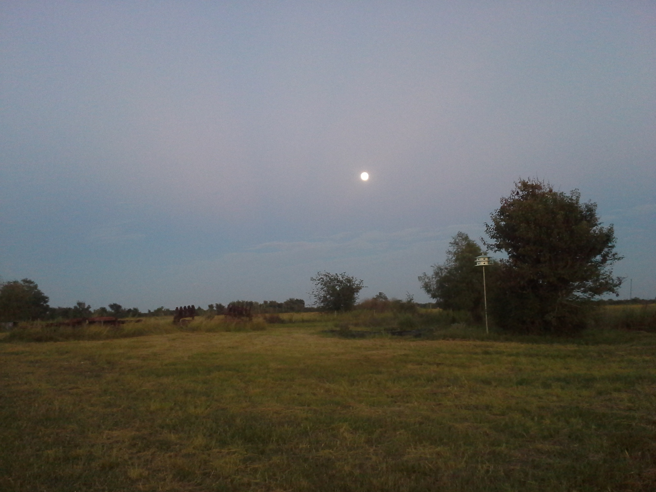 Now, that's an Autumn Moon Dog night.