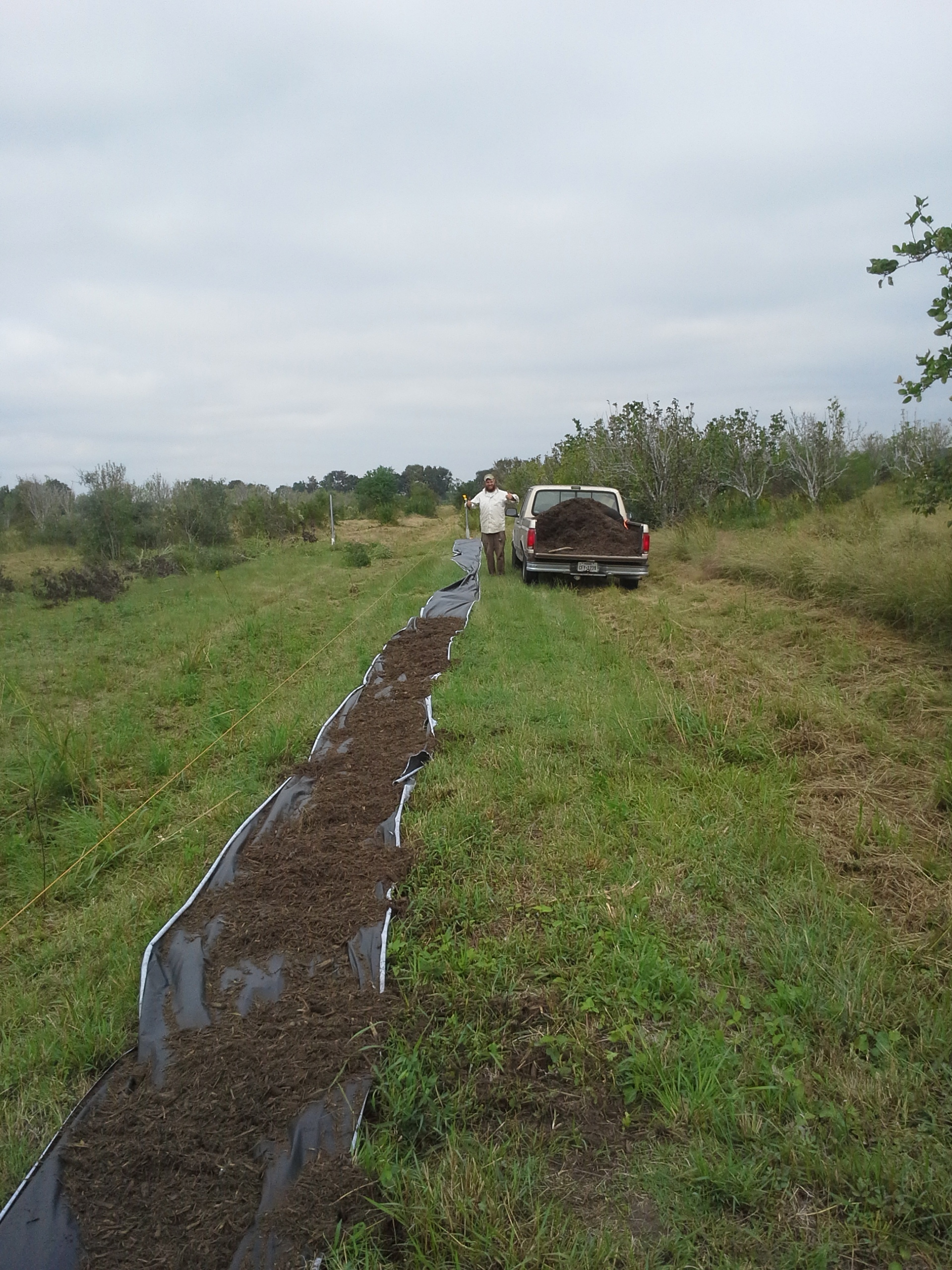 You can't see it, but SO much chainsawing, measuring, mowing and sweating went into getting to just this line of mulch.
