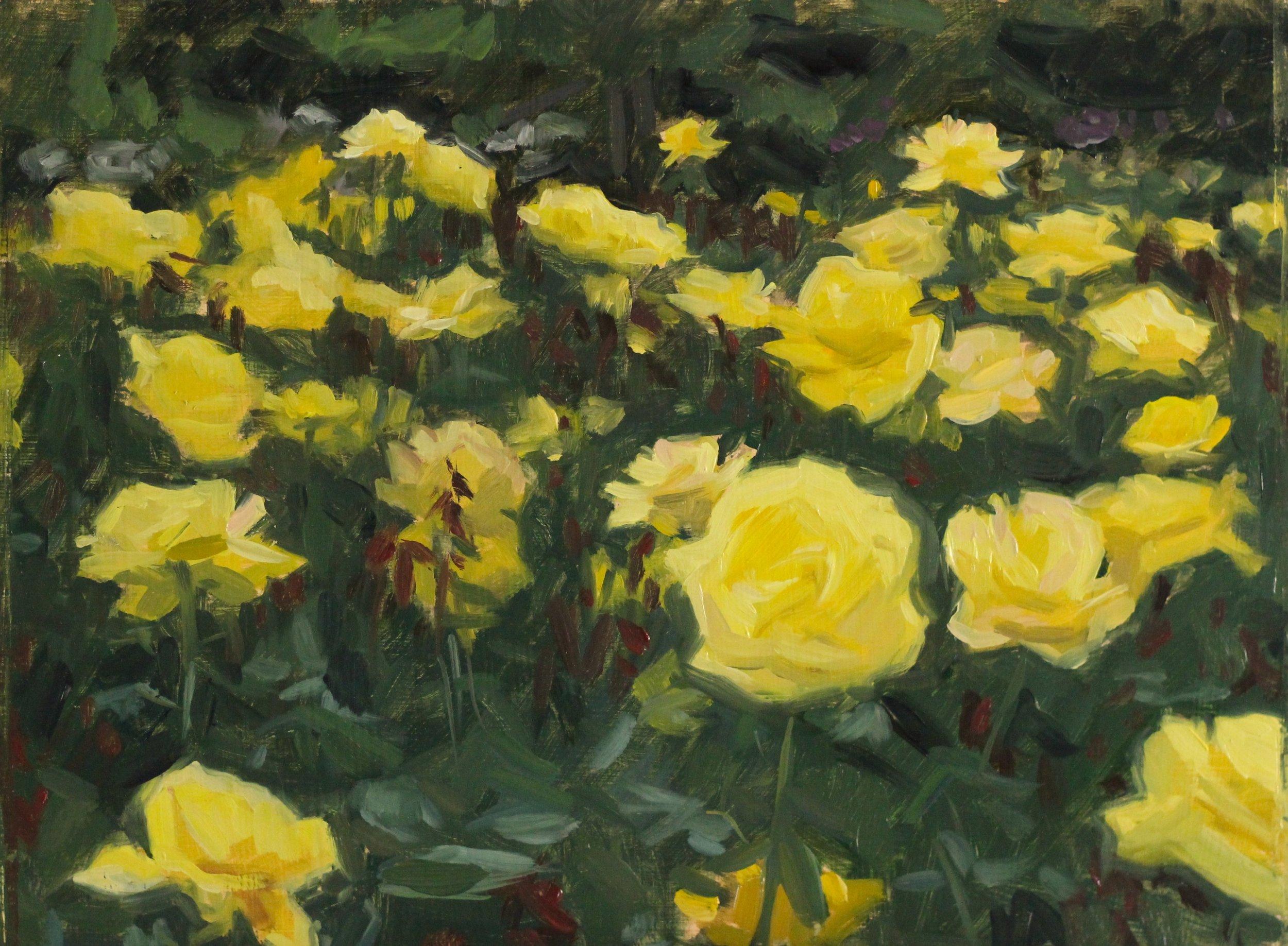 Roses, Oil on Panel, 25 x 35cm, 2017