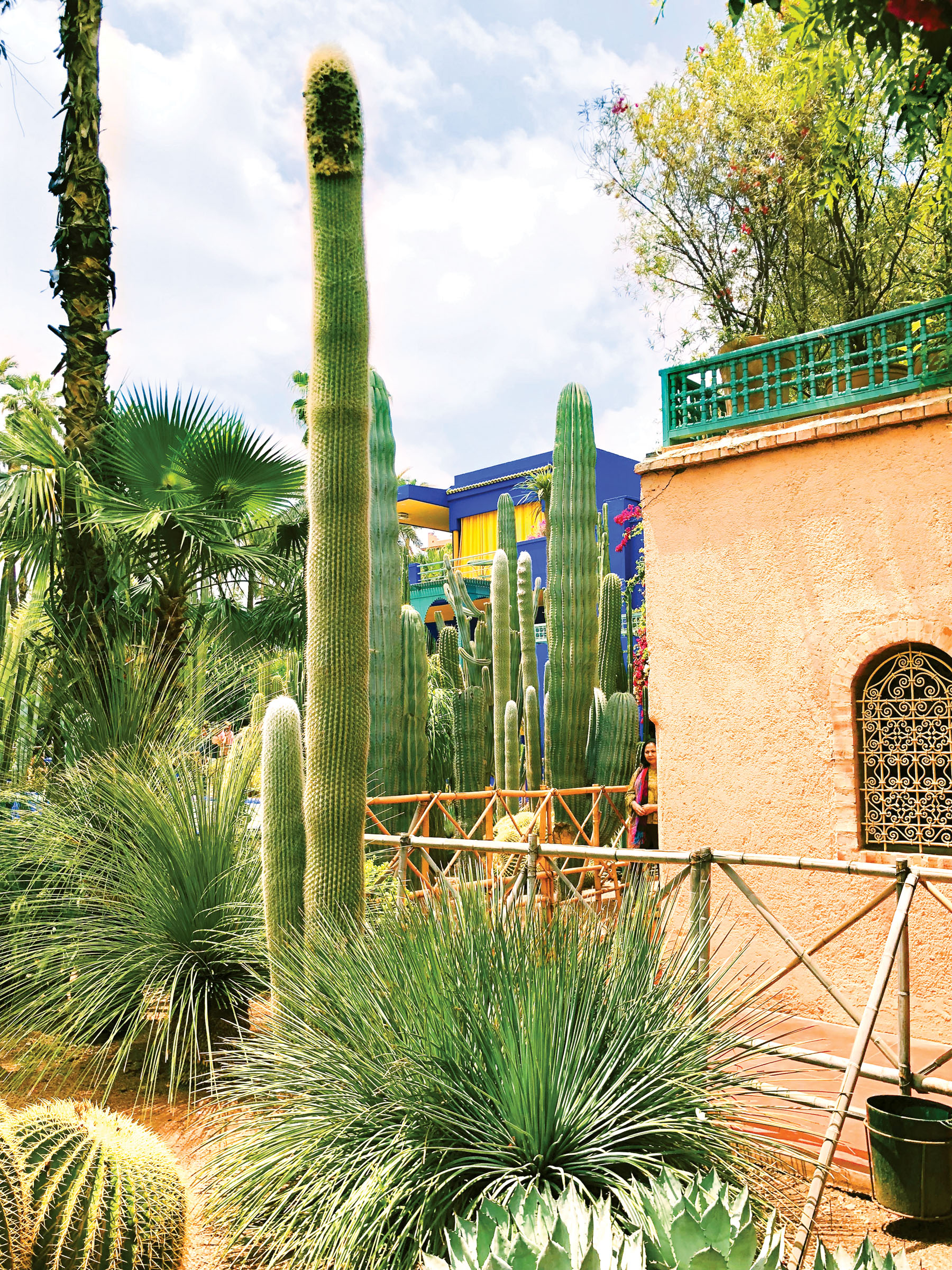 Something colourful around every corner at the Musee Yves Saint Laurent Marrakech