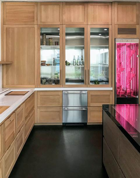 A prototype kitchen by Vera Iconica Architecture includes a hydroponic garden, which looks like a pink refrigerator, and climate-controlled cabinets.