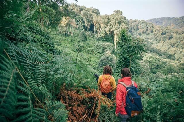 - Hiking through Uganda with Intrepid Travel