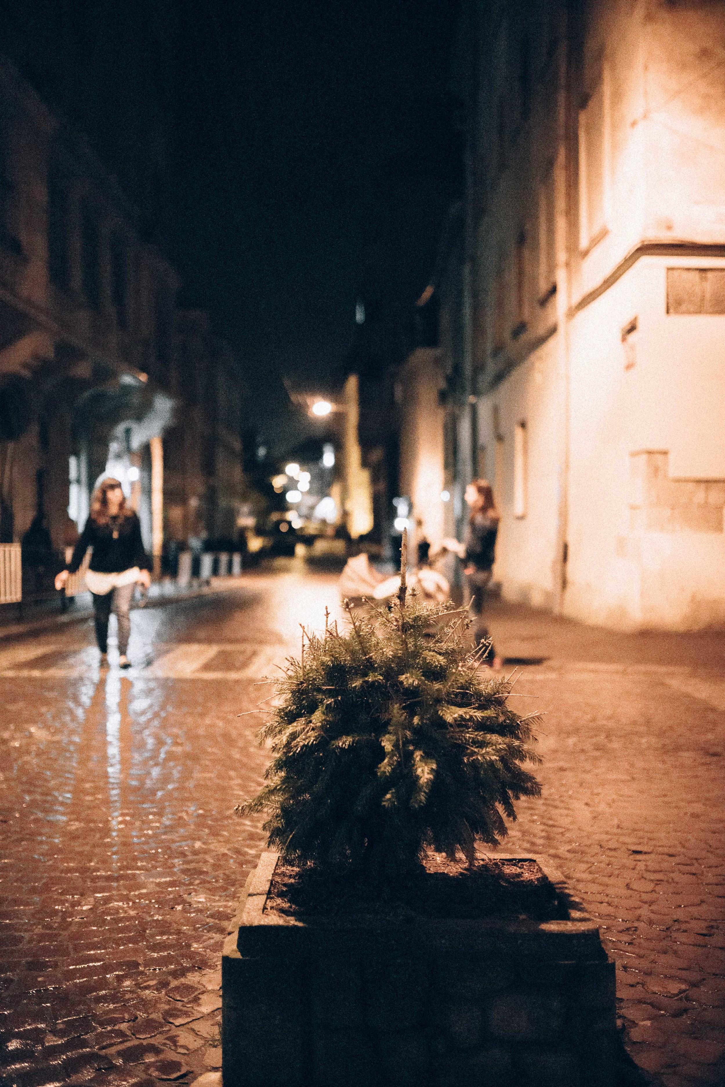 Exploring at night.