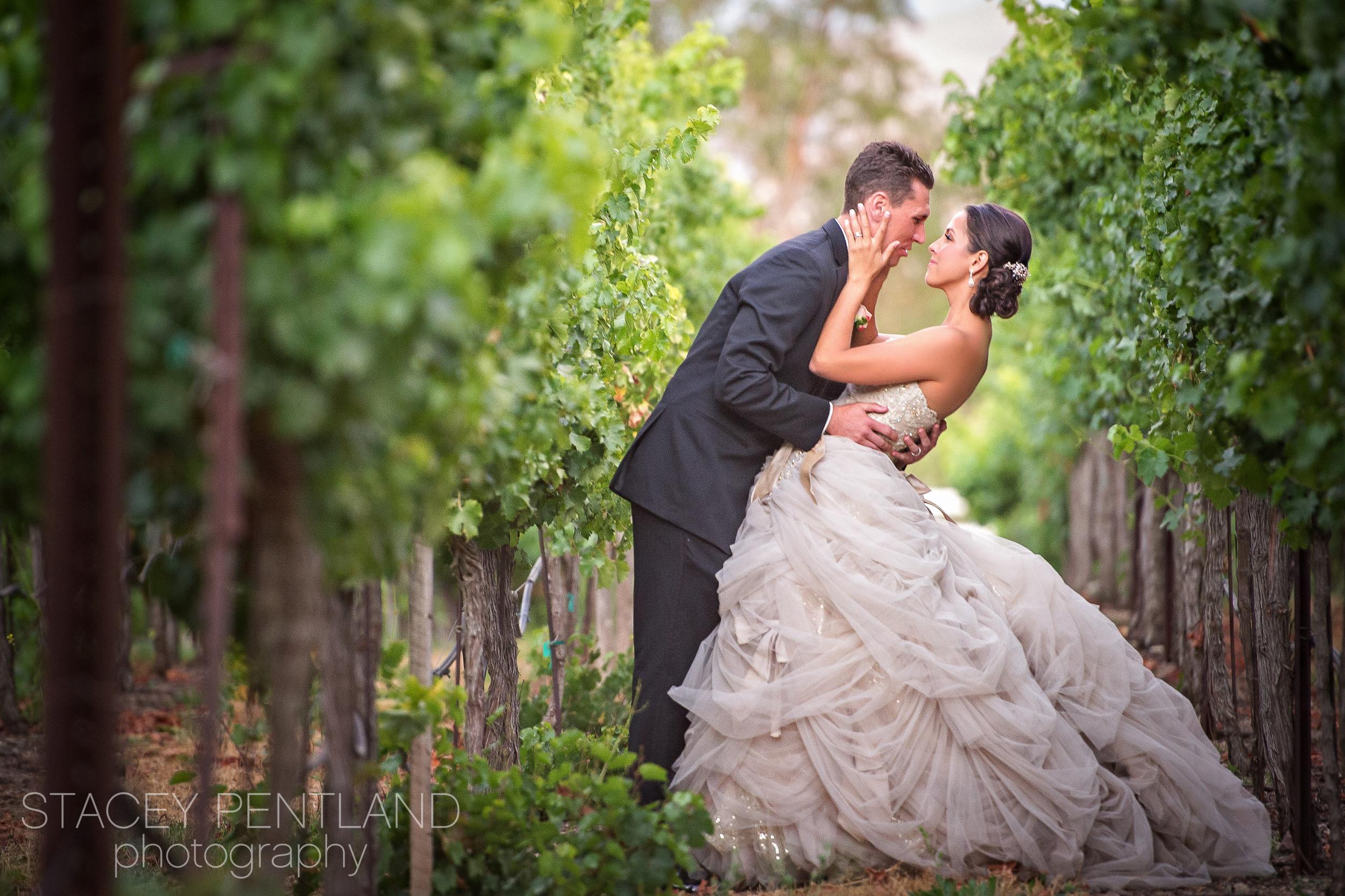 brie+chris_wedding_spp_001.jpg