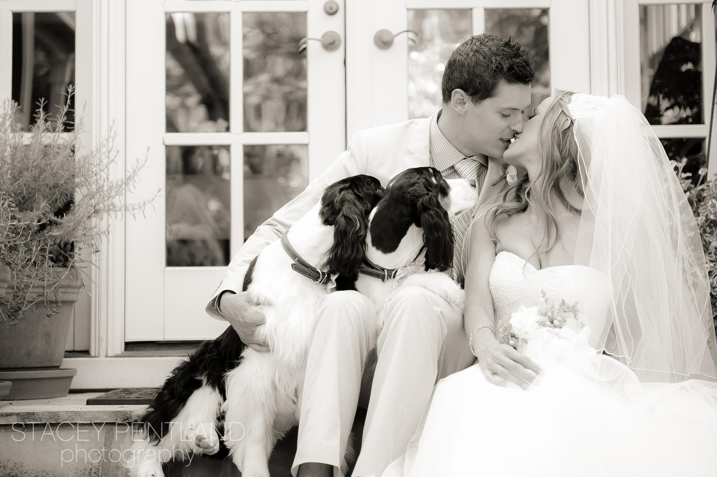 laura+bo_wedding_spp_001.jpg