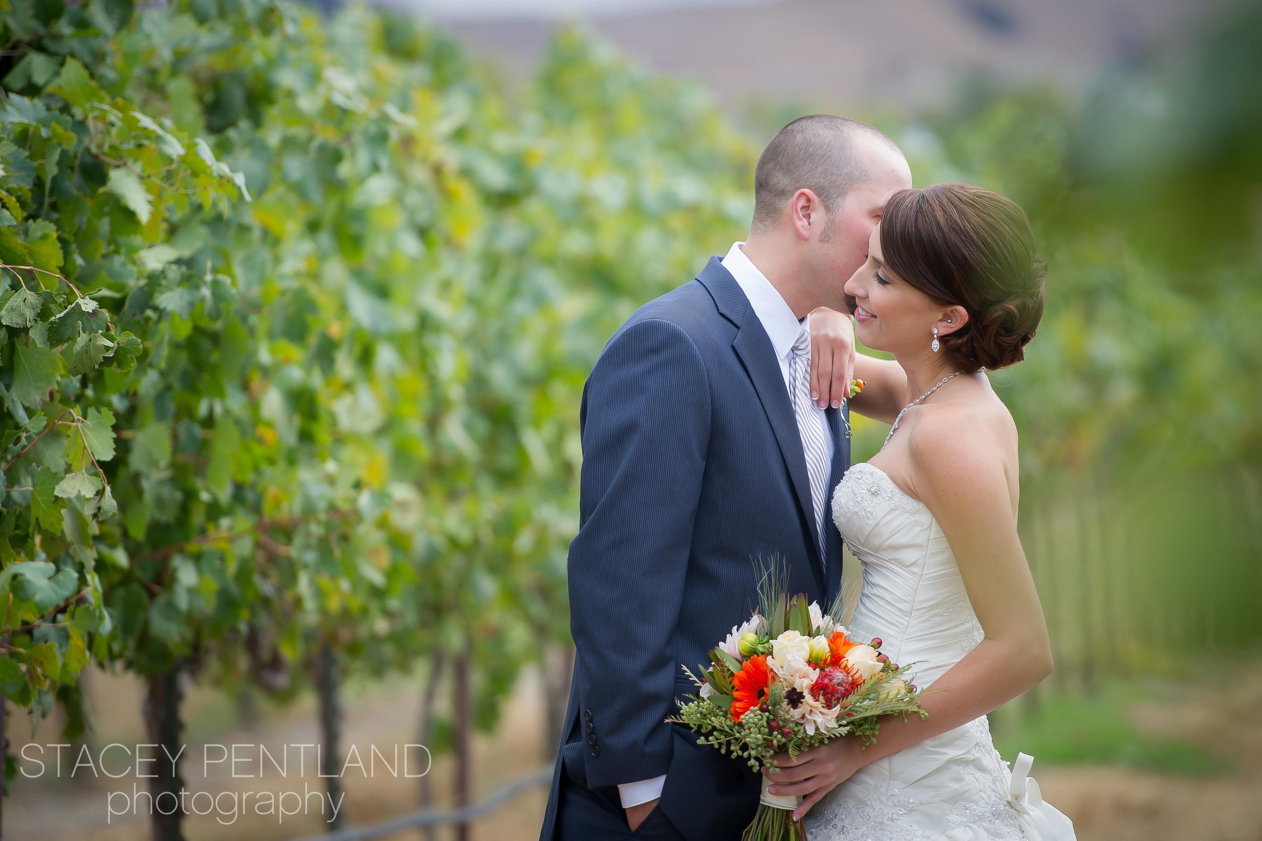 michelle+david_wedding_spp_001.jpg
