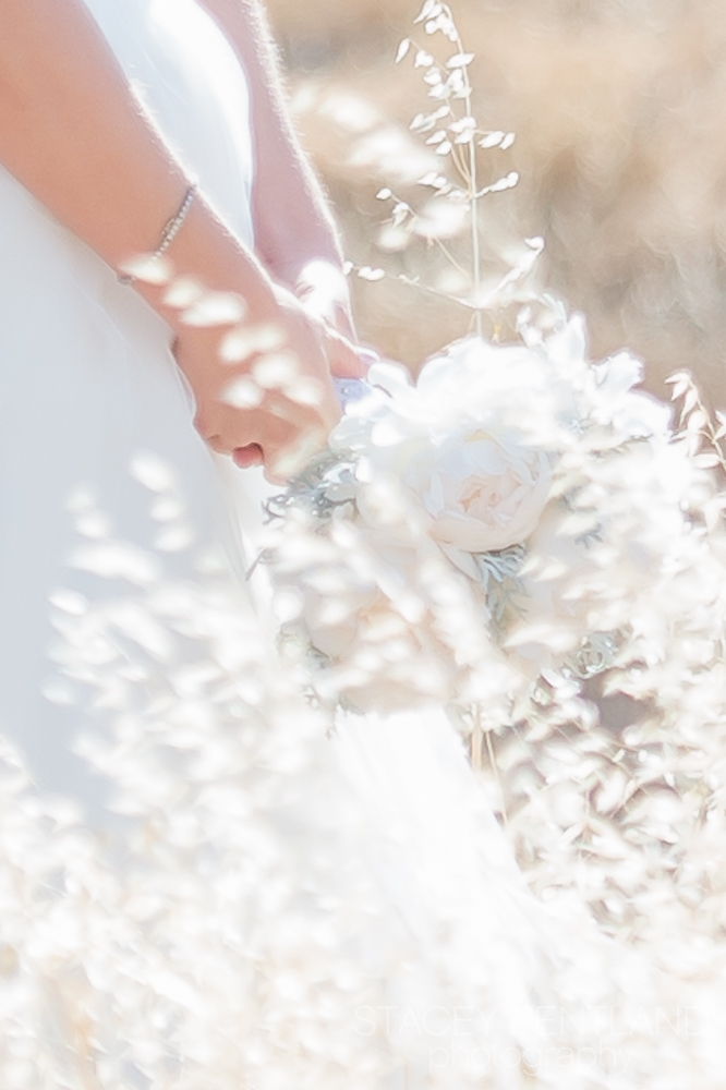 laauren+mike_wedding_spp_062.jpg