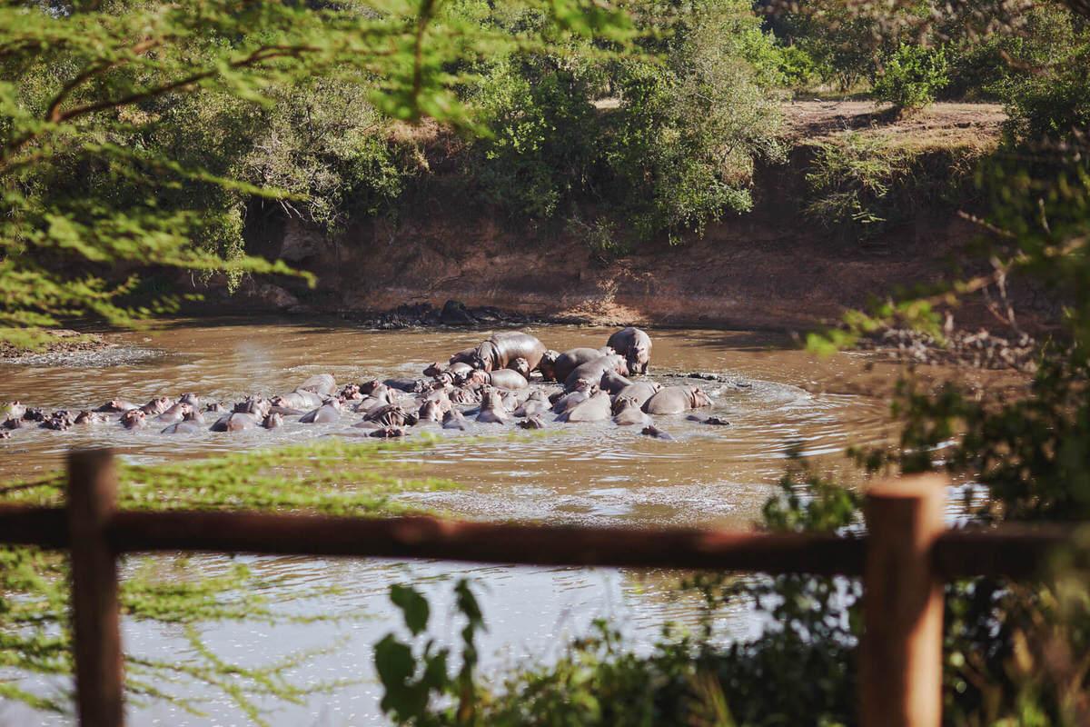 Masai Mara Safari Neptune Pre Wedding Styled Session Kenyan destination photographer