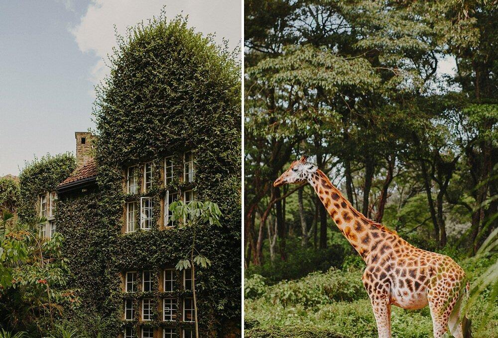 Giraffe Manor - Adventure Weekend in Nairobi