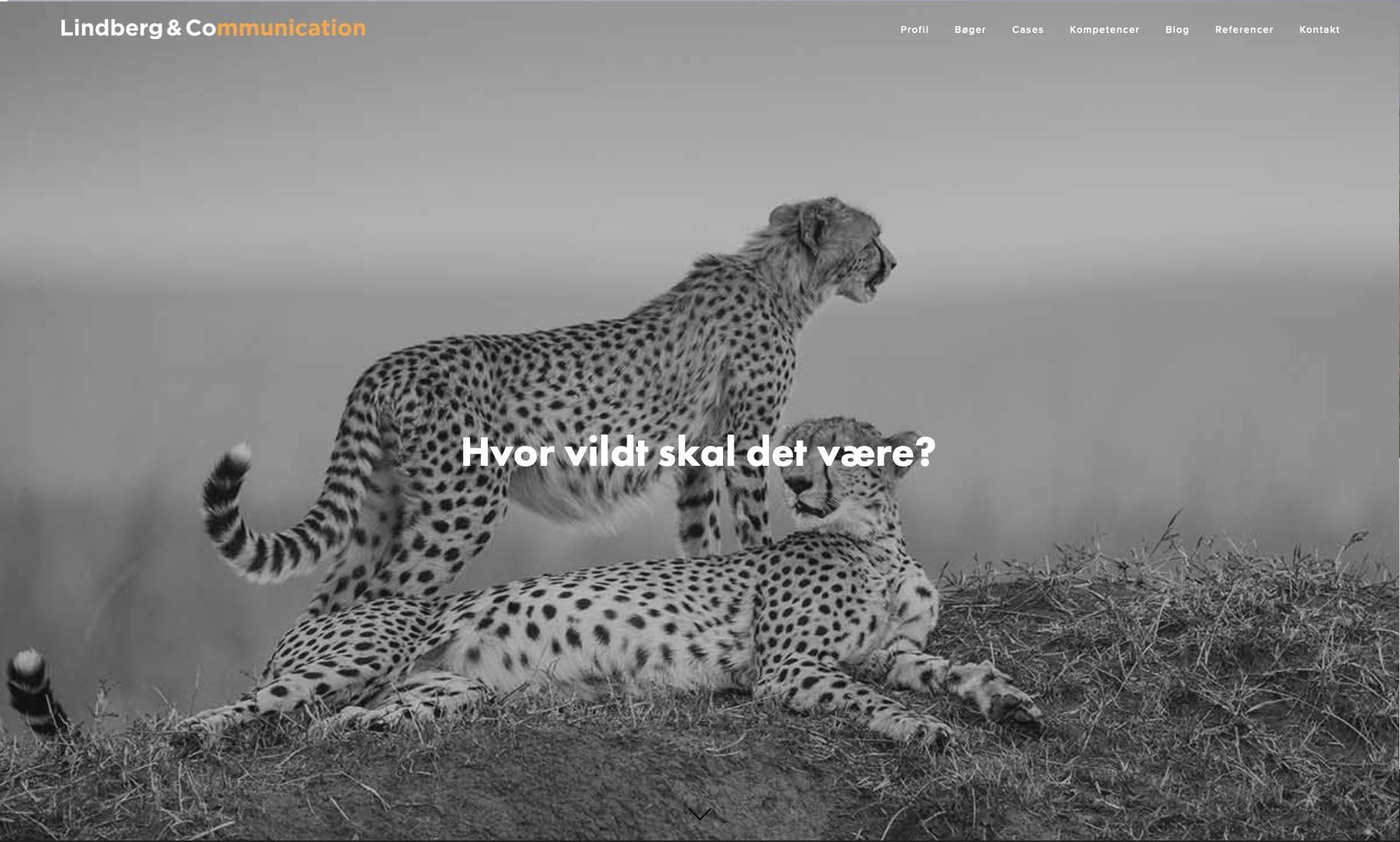 Website: Lindberg & Co