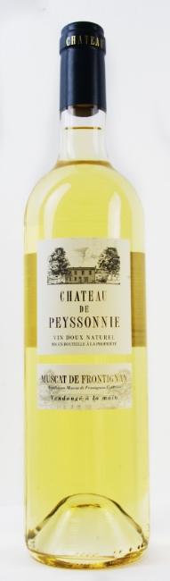 chateau de peyssonie.jpg