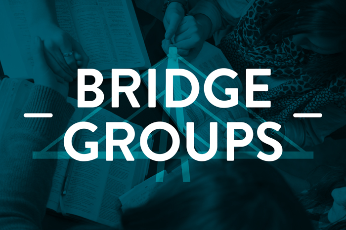 Bridge Groups Image
