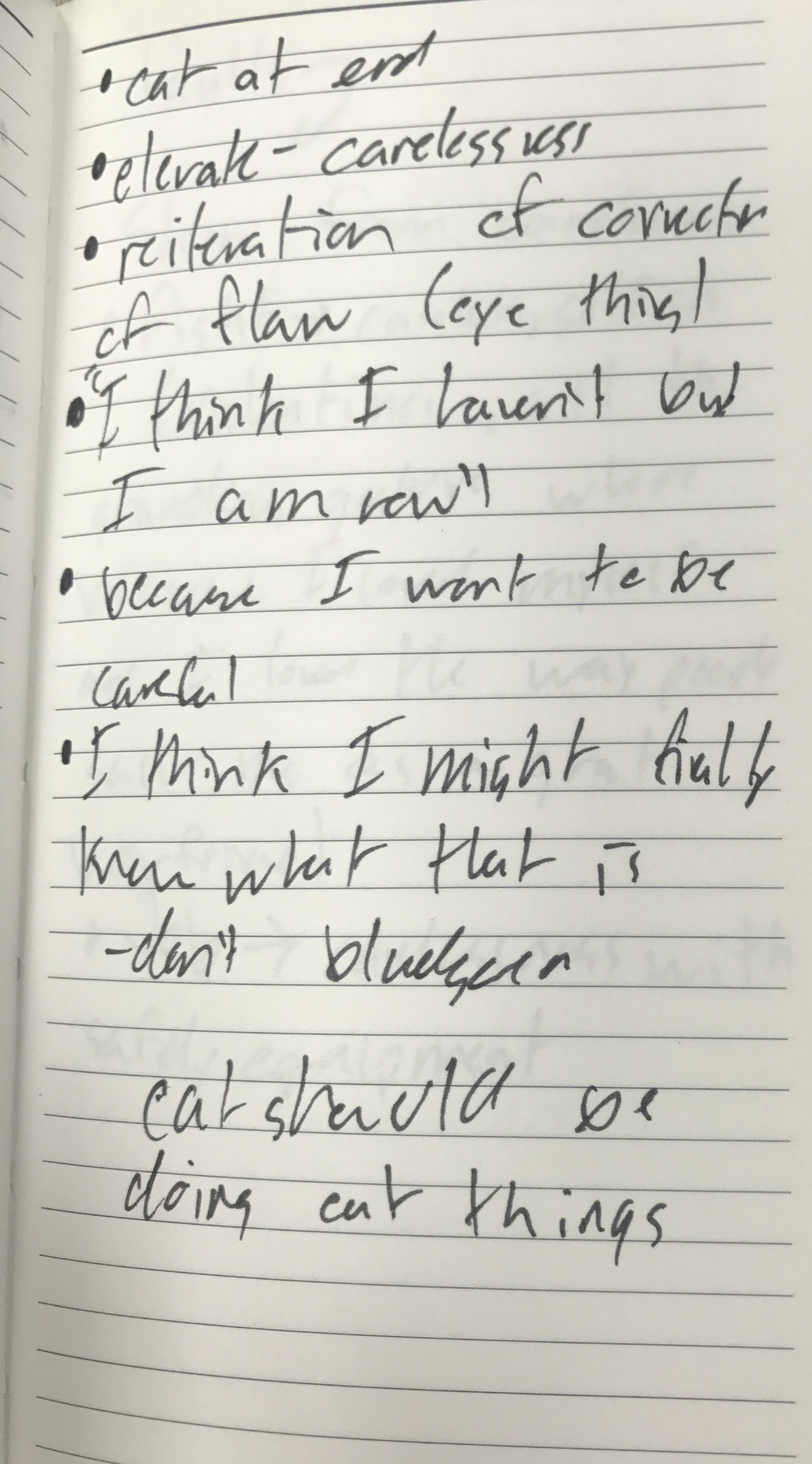 Notebook_Notes_2.jpg
