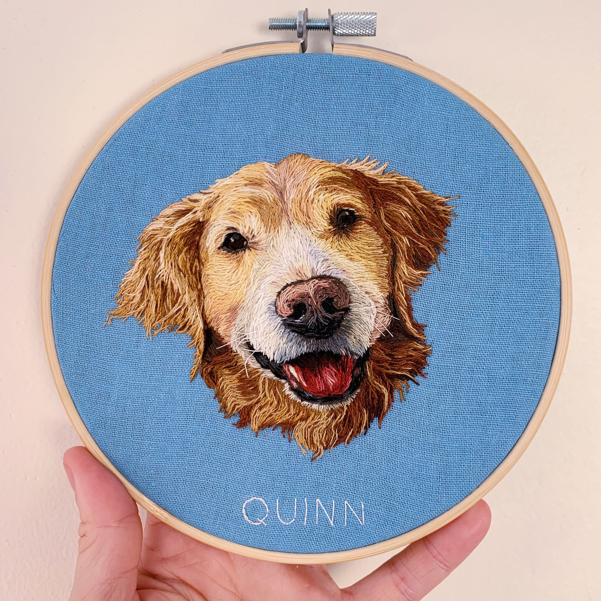 Pet Portrait Quinn.JPG