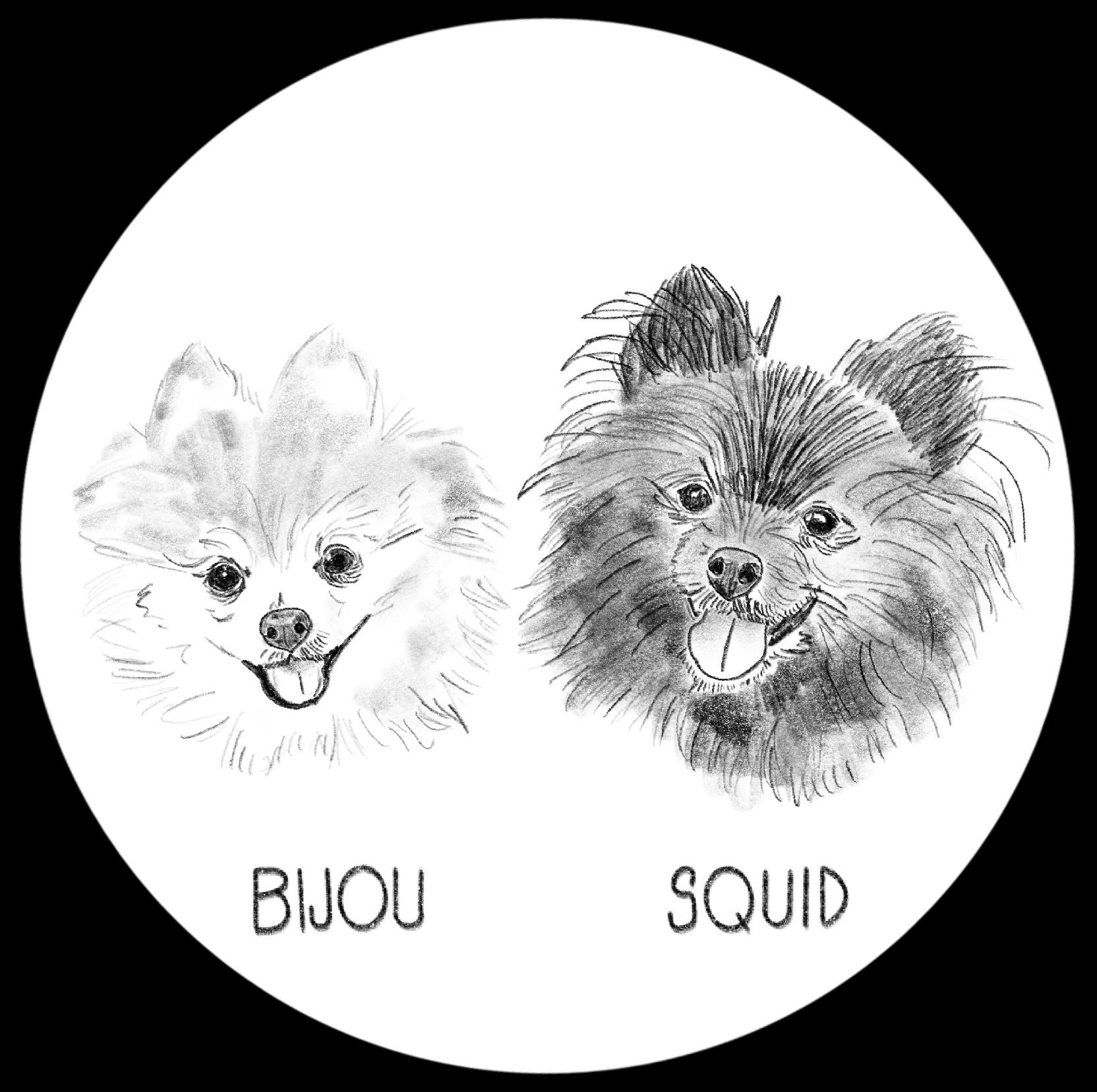 Bijou & Squid.JPG
