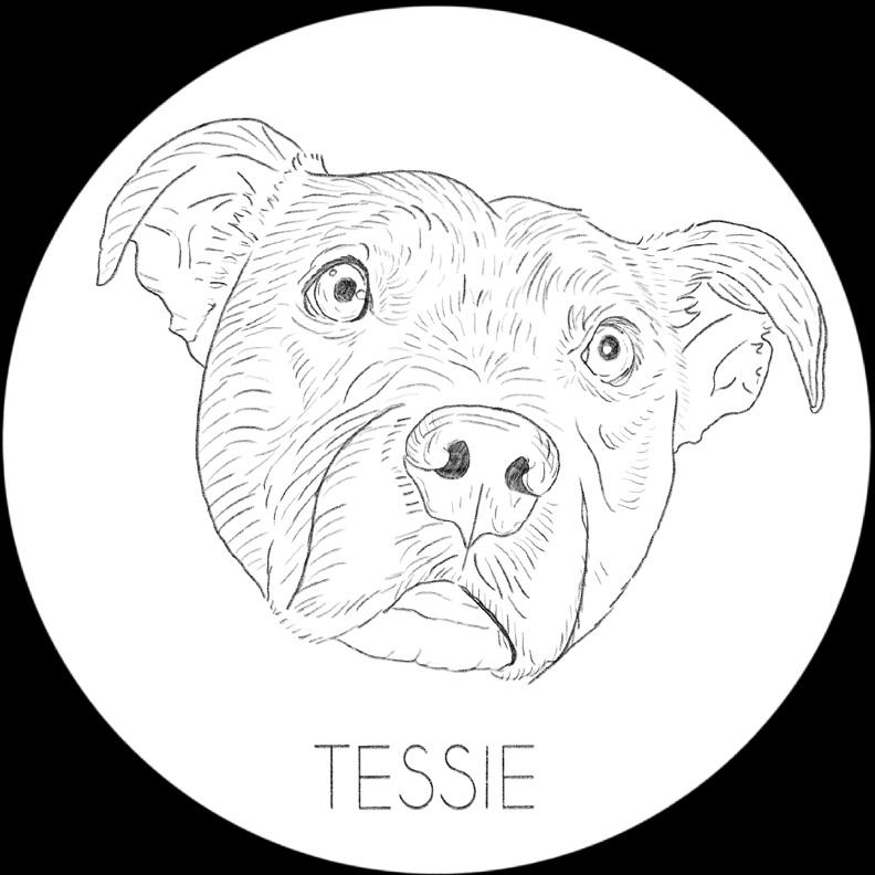 Tessie Pattern.jpg