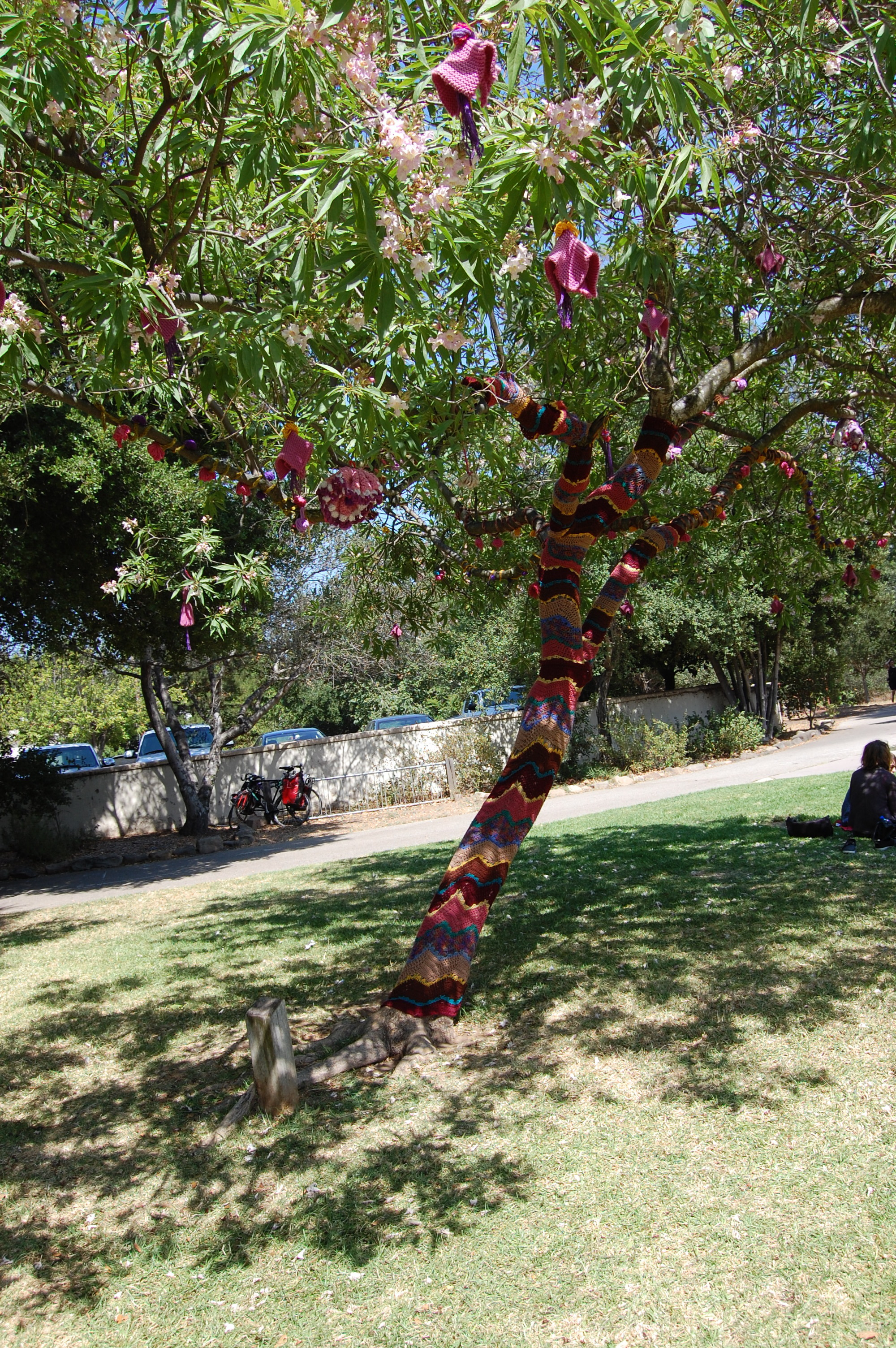Beautiful tapestries on trees throughout the grounds.