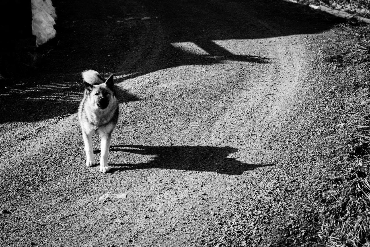 All Images_Lofoten_Svolvær © Alan Thomas Duncan Wilkie-3.jpg