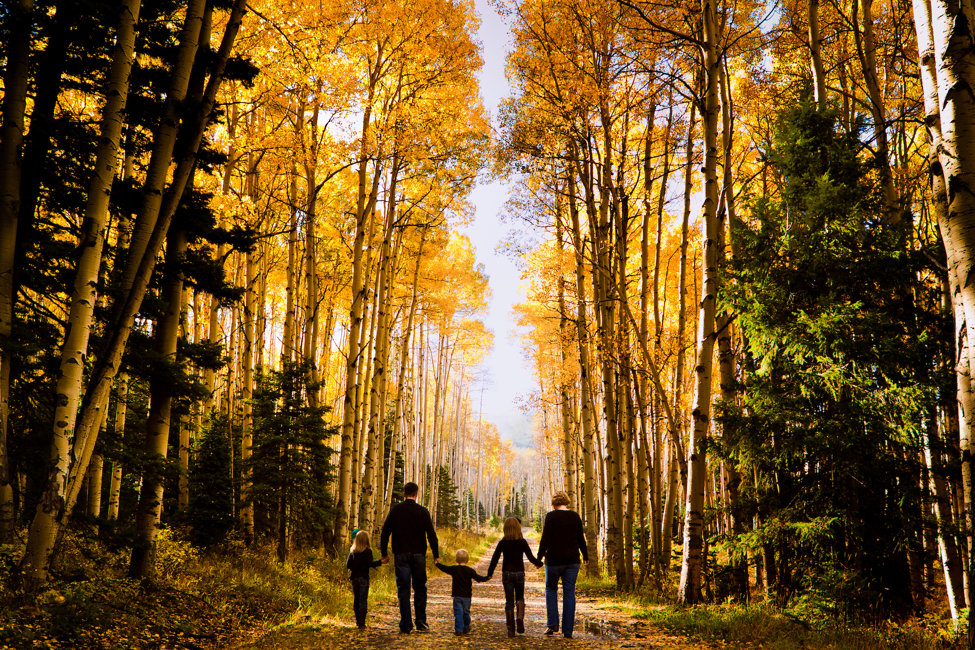 My favorite Family Photo ever--The Earleys in 2010 in Beautiful Pagosa Springs, CO