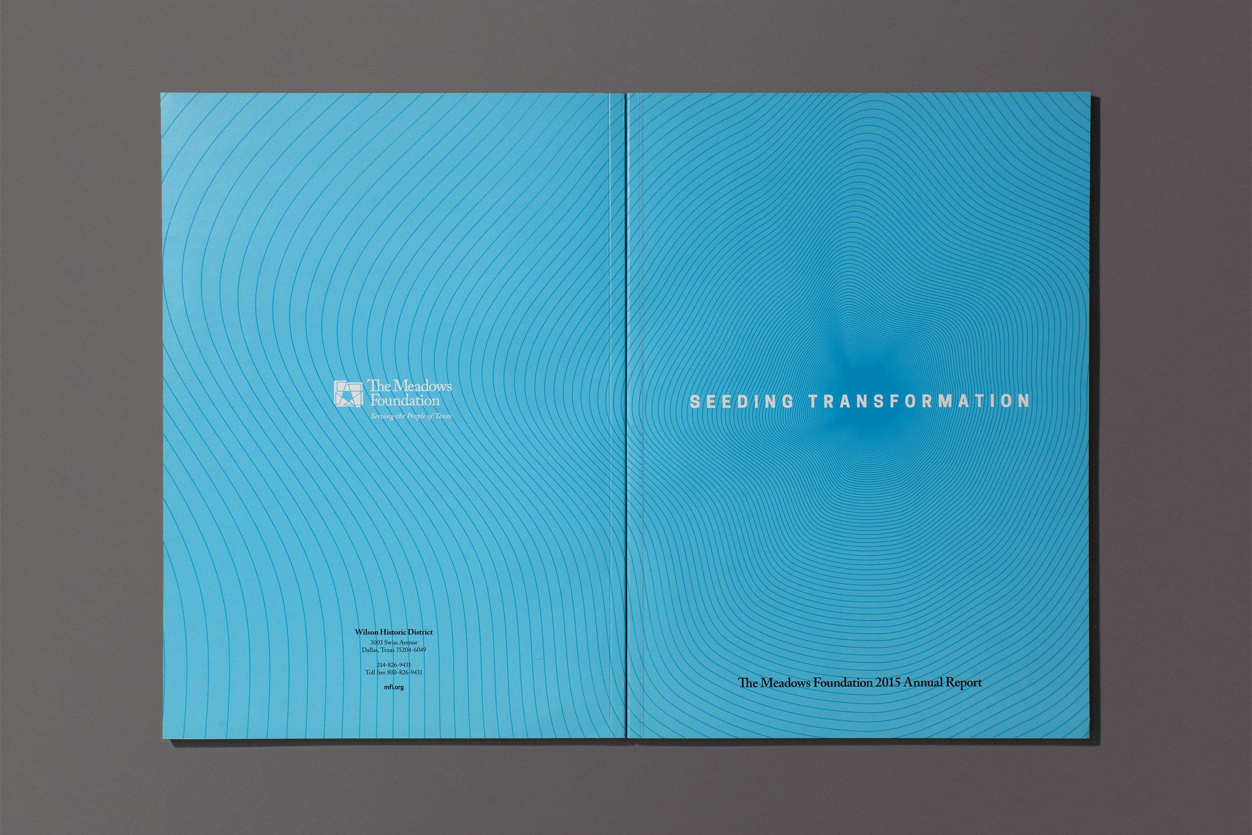 ronaldvillegas-meadows-annual-report-cover.jpg