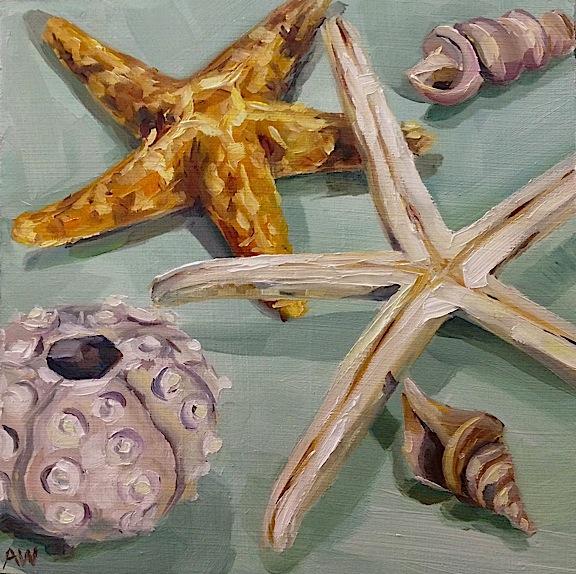 Shells on seagreen
