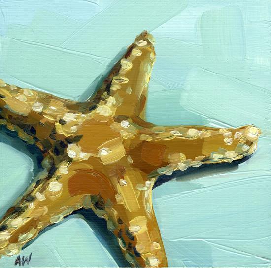 sugar-star-on-seafoam.jpg